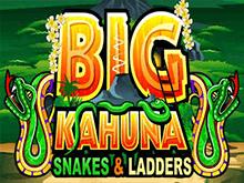 Биг Кахуна - Змеи И Лестницы в Вулкан на деньги